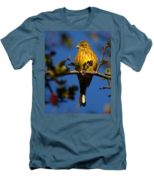 Yellowhammer Men's T-Shirt (Athletic Fit)