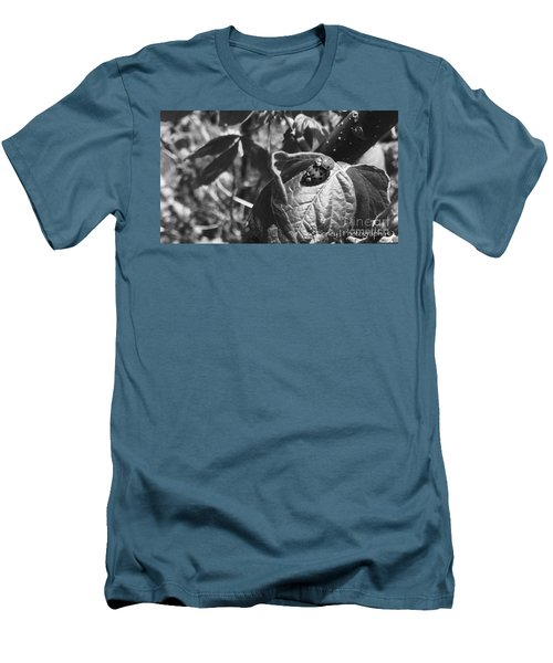 Men's T-Shirt (Slim Fit) featuring the photograph  Love-bugs - No. 2016 by Joe Finney
