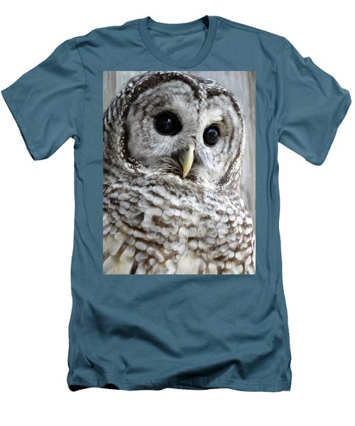 Barred Owl Men's T-Shirt (Slim Fit) by Rebecca Overton