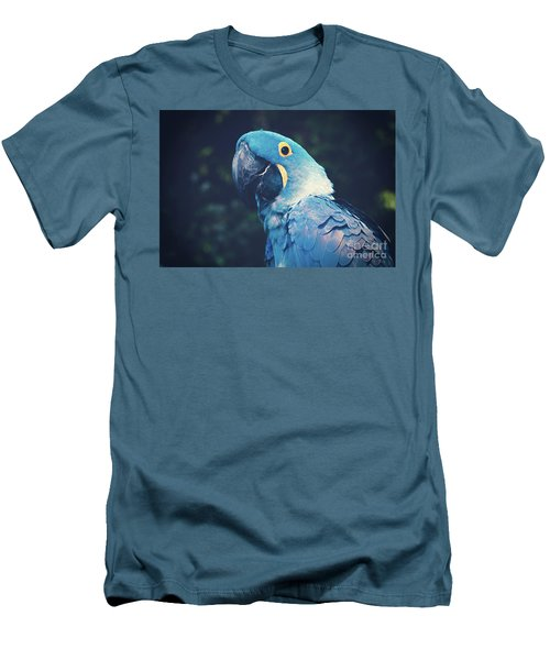Blue Hyacinth Macaw Men's T-Shirt (Slim Fit) by Sharon Mau