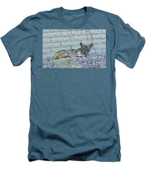 Coyote Men's T-Shirt (Slim Fit) by Anne Rodkin