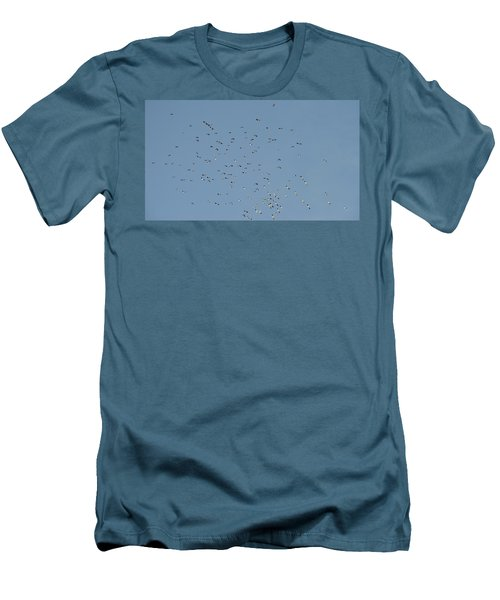 Flock Of Beautiful Migratory Lapwing Birds In Clear Winter Sky Men's T-Shirt (Athletic Fit)