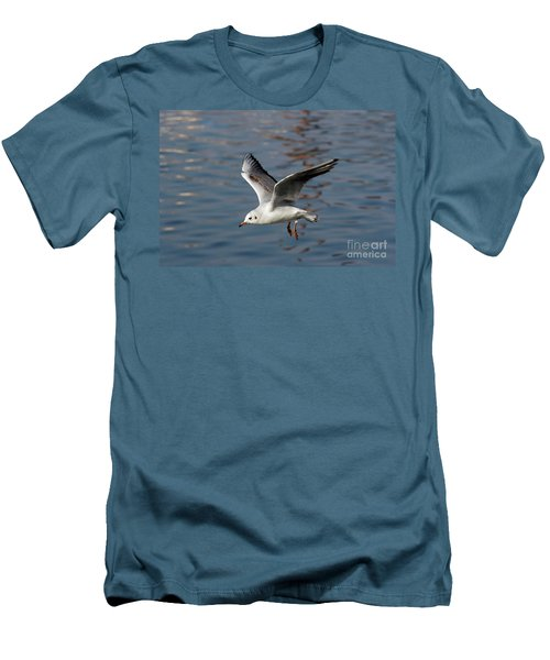 Flying Gull Men's T-Shirt (Slim Fit) by Michal Boubin