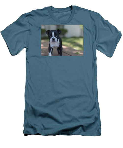 Harley As A Puppy Men's T-Shirt (Slim Fit) by Lora Lee Chapman
