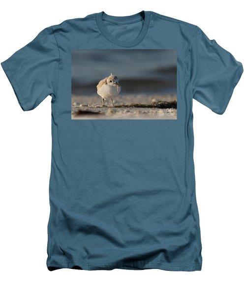 Snowy Plover Men's T-Shirt (Slim Fit) by Meg Rousher