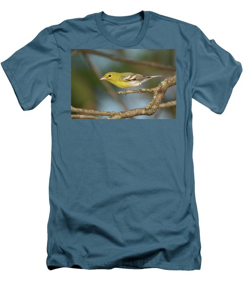 Yellow-throated Vireo Men's T-Shirt (Slim Fit) by Alan Lenk