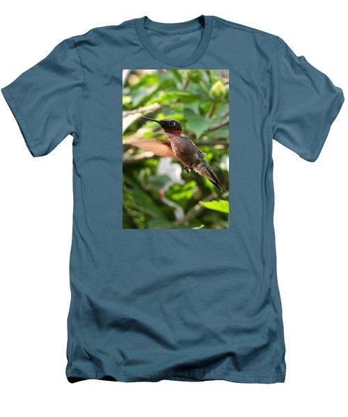 Hummingbird Men's T-Shirt (Slim Fit) by John Freidenberg