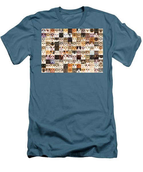 140 Random Cats Men's T-Shirt (Athletic Fit)