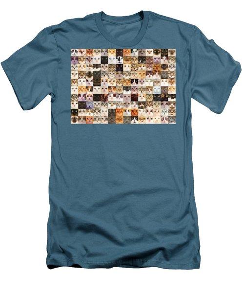 140 Random Cats Men's T-Shirt (Athletic Fit)