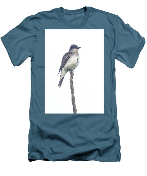 Eastern Kingbird Men's T-Shirt (Athletic Fit)