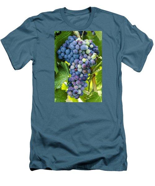 Red Wine Grapes Men's T-Shirt (Slim Fit) by Teri Virbickis