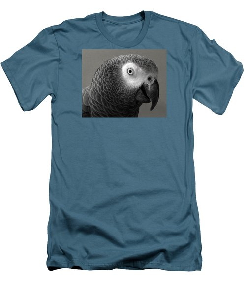African Gray Men's T-Shirt (Slim Fit) by Sandi OReilly