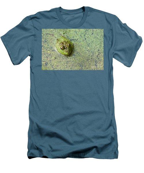 American Bullfrog Men's T-Shirt (Slim Fit) by Sean Griffin