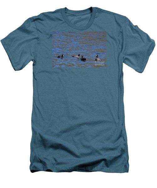American Coots 20120405_216a Men's T-Shirt (Slim Fit) by Tina Hopkins