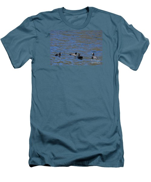 American Coots 20120405_216a Men's T-Shirt (Athletic Fit)