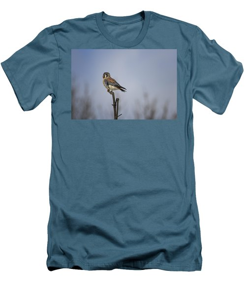 American Kestrel Men's T-Shirt (Slim Fit) by Gary Hall