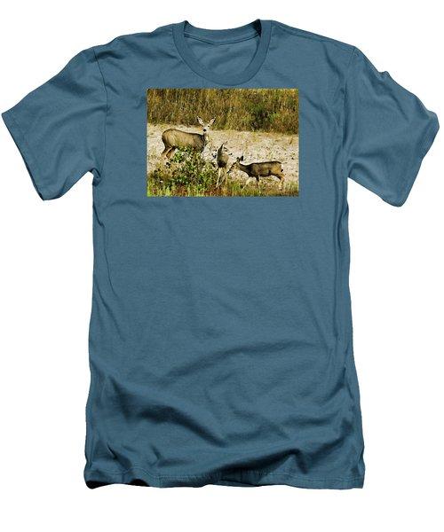 Mule Doe And Her Twins Men's T-Shirt (Slim Fit) by Bill Kesler
