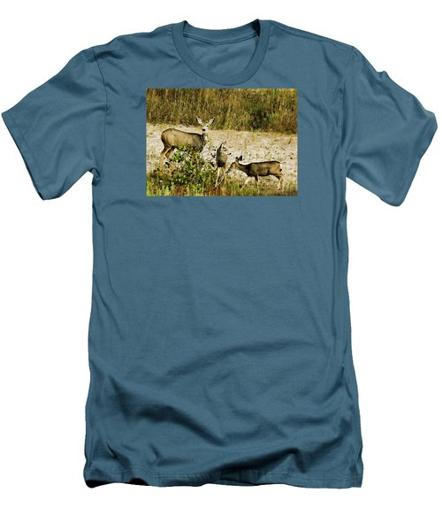 Mule Doe And Her Twins Men's T-Shirt (Athletic Fit)