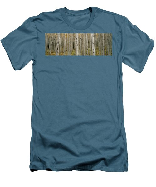 Aspen Grove In Fall, Kebler Pass Men's T-Shirt (Athletic Fit)