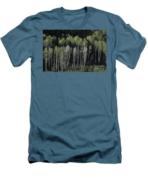 Aspen Spring Men's T-Shirt (Athletic Fit)