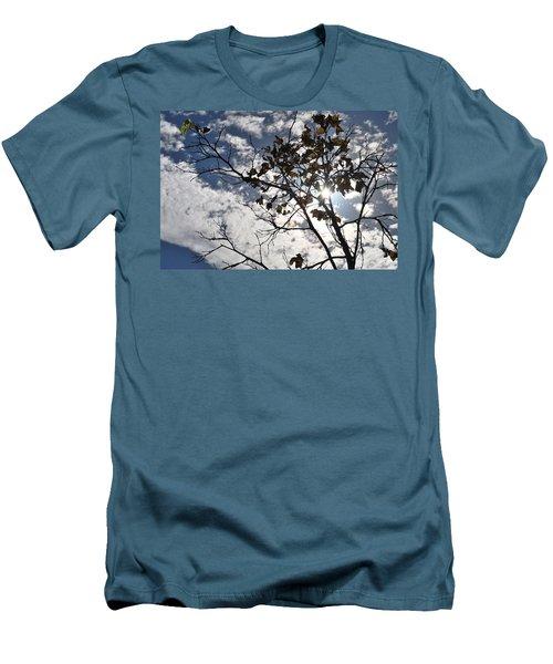 Autumn Yellow Back-lit Tree Branch Men's T-Shirt (Slim Fit) by Matt Harang