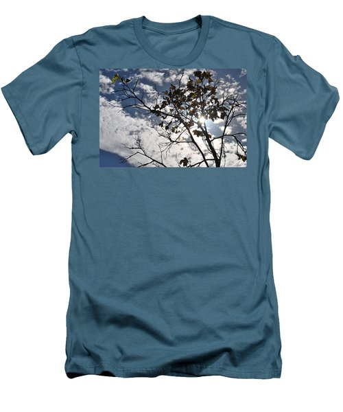 Autumn Yellow Back-lit Tree Branch Men's T-Shirt (Athletic Fit)
