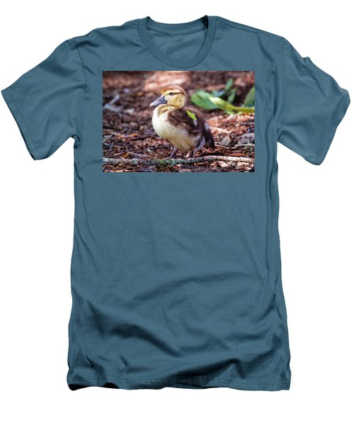 Baby Duck Sitting Men's T-Shirt (Slim Fit) by Stephanie Hayes