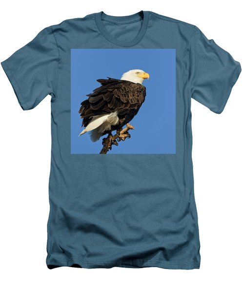 Bald Eagle Squared Men's T-Shirt (Athletic Fit)