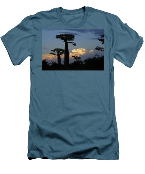 Baobabs And Storm Clouds Men's T-Shirt (Athletic Fit)