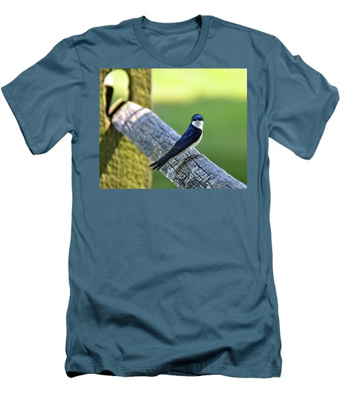 Barn Swallow Looking Angry Men's T-Shirt (Athletic Fit)