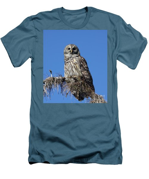 Barred Owl Portrait Men's T-Shirt (Athletic Fit)