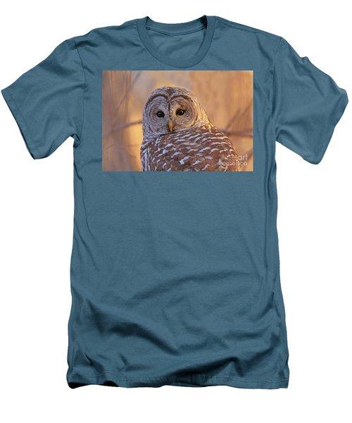 Barred Owl Portrait  Men's T-Shirt (Athletic Fit)