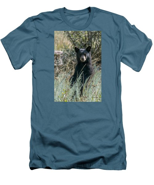 Bear Cub At Waterton Canyon Men's T-Shirt (Slim Fit) by Stephen  Johnson