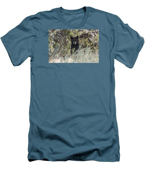 Bear Cub Looking For Mom Men's T-Shirt (Slim Fit) by Stephen  Johnson