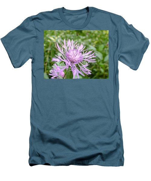 Bee Balm Men's T-Shirt (Athletic Fit)