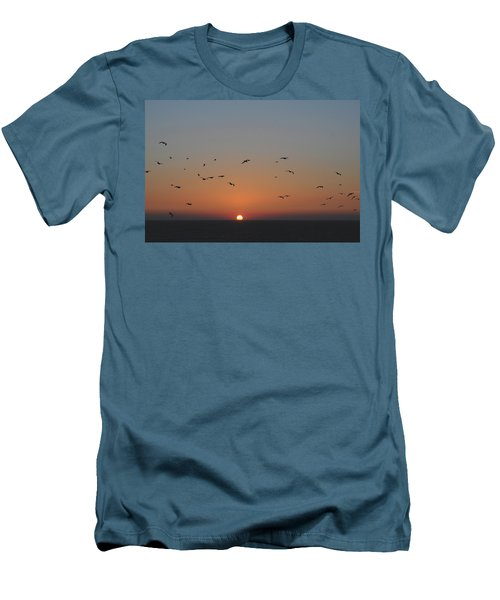 Birds In Sunset Men's T-Shirt (Slim Fit) by Haleh Mahbod