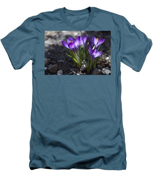 Blooming Crocus #2 Men's T-Shirt (Slim Fit) by Jeff Severson