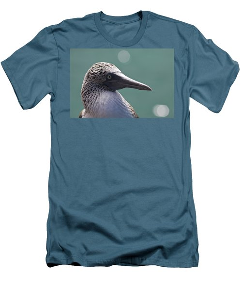 Blue Footed Booby II Men's T-Shirt (Slim Fit) by Dave Fleetham