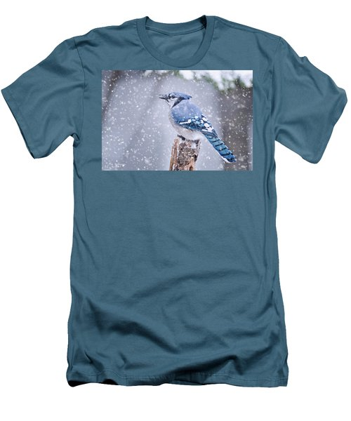 Blue Jay In Snow Storm Men's T-Shirt (Athletic Fit)