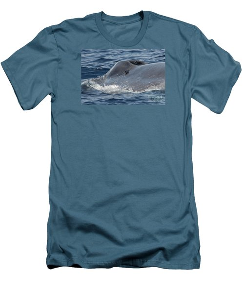 Blue Whale Head Men's T-Shirt (Slim Fit)