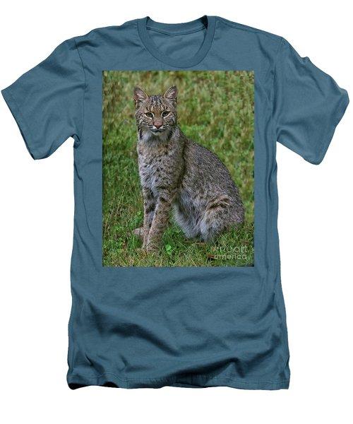Bobcat On Alert Men's T-Shirt (Slim Fit) by Myrna Bradshaw