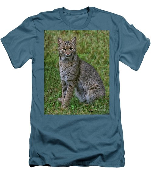 Bobcat On Alert Men's T-Shirt (Athletic Fit)