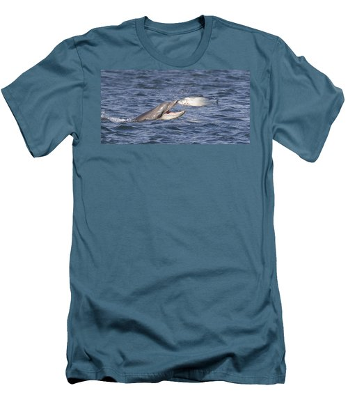 Bottlenose Dolphin Eating Salmon - Scotland  #36 Men's T-Shirt (Athletic Fit)