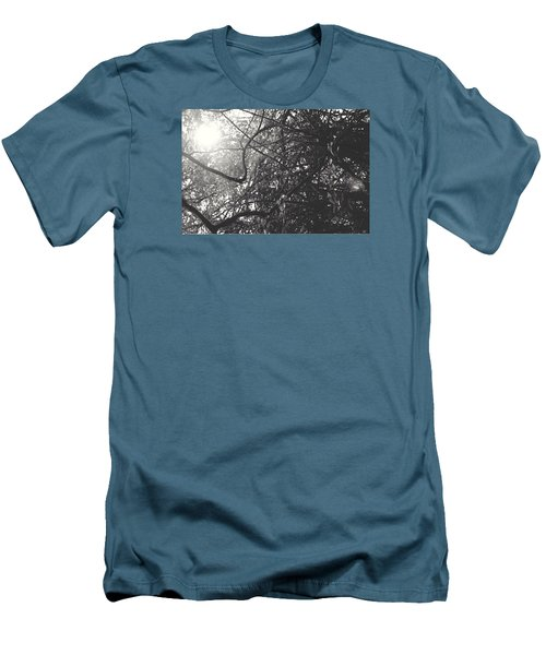 Branches Men's T-Shirt (Slim Fit) by Sarah Boyd