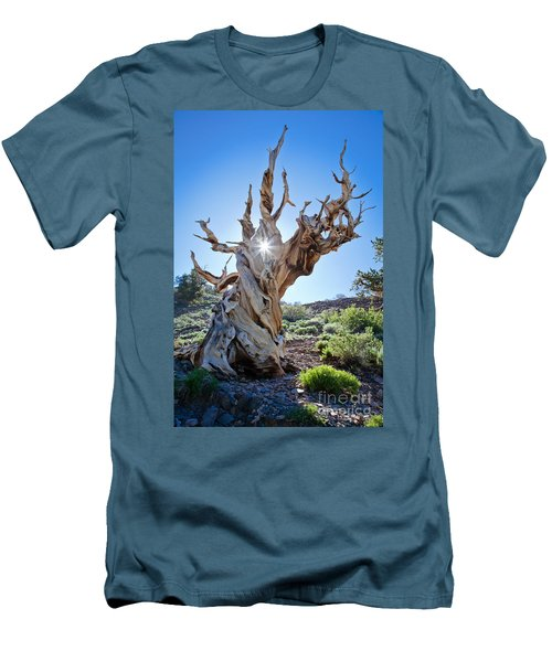 Bristlecone And Sun Men's T-Shirt (Athletic Fit)