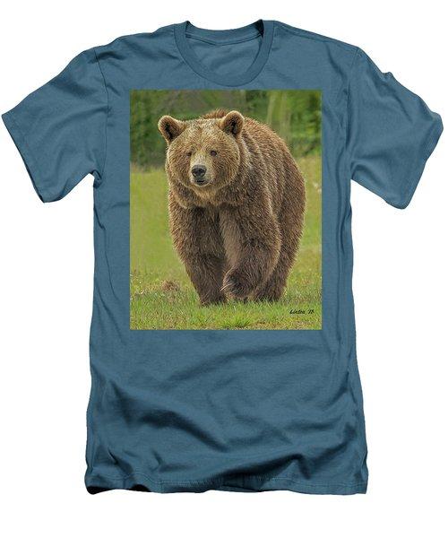 Brown Bear 1 Men's T-Shirt (Athletic Fit)