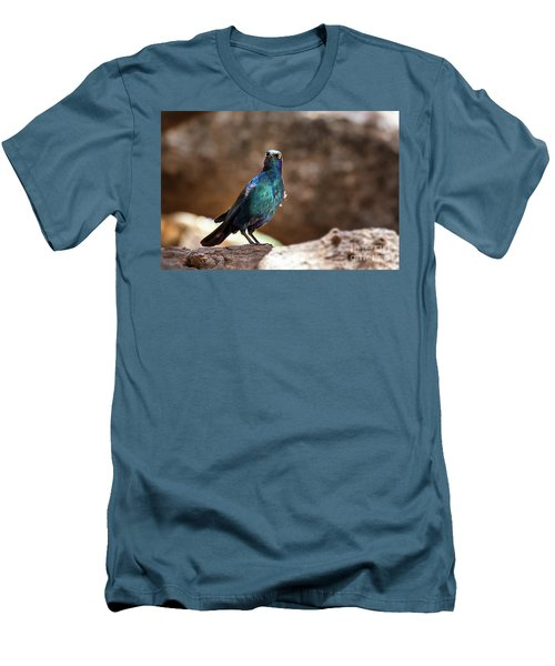 Cape Glossy Starling Men's T-Shirt (Athletic Fit)