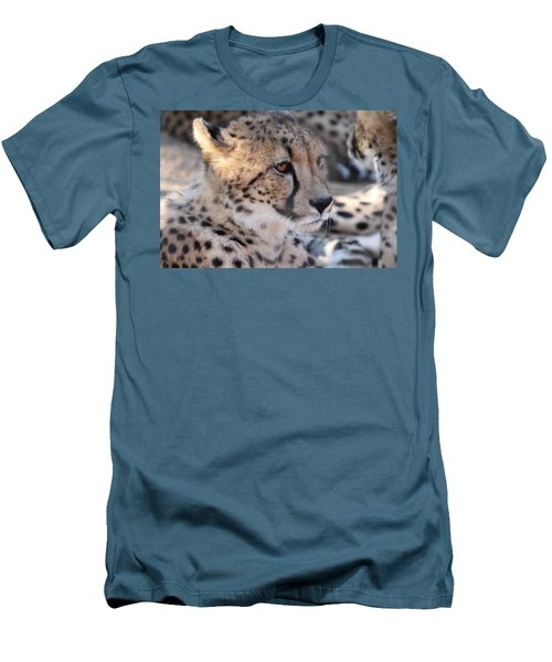 Cheetah And Friends Men's T-Shirt (Athletic Fit)