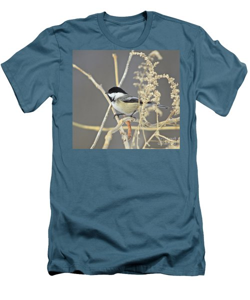 Chickadee-8 Men's T-Shirt (Athletic Fit)