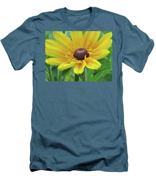 Close Up Summer Daisy Men's T-Shirt (Slim Fit) by Michele Wilson